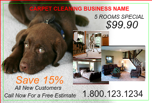 [Image: Carpet Cleaning Flyer]