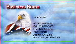 [Image: American Eagle Business cards]