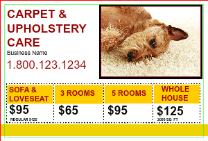 [Image: checkout with Carpet & Upholstery Flyer Marketing]