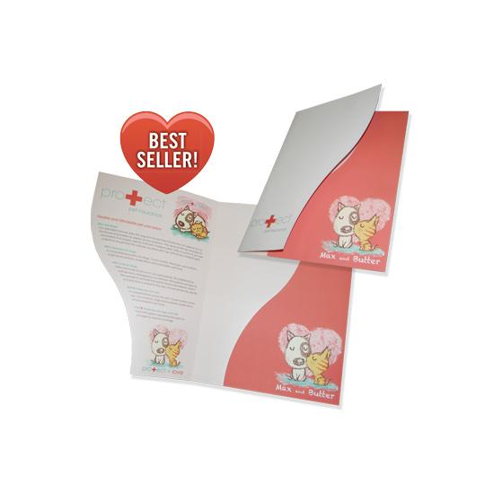 One Small And One Vertical Pocket Folder Designsnprint