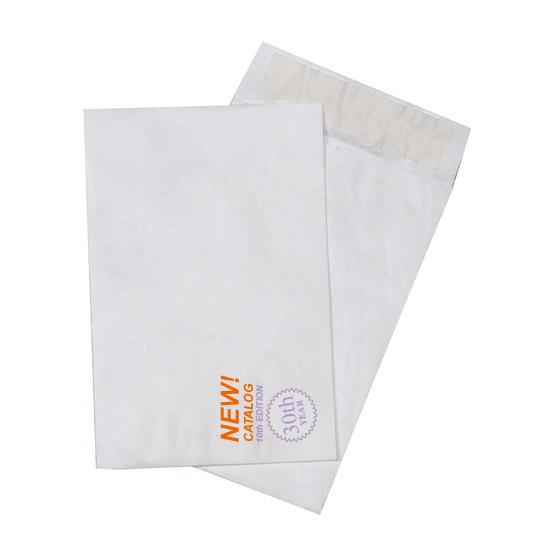 [Image: Custom Printed Tyvek Envelopes - 10 x 13 Catalog]